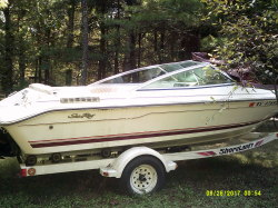 Used Premier Pontoon